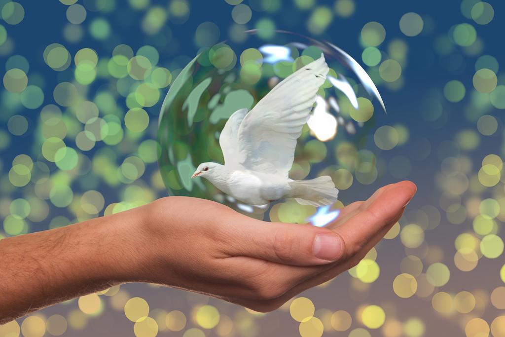 Regresó la paz, con compasión