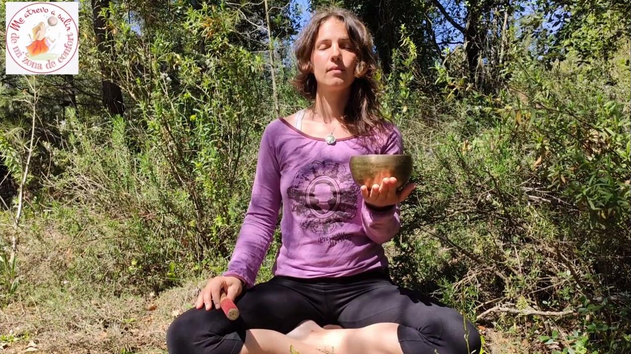 Meditaciones de bolsillo - Meditación de los sentidos