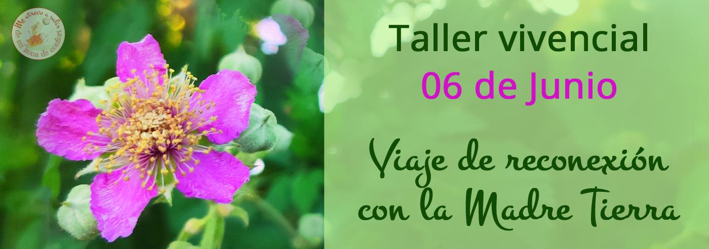 """Taller """"Viaje de reconexión con la Madre Tierra"""""""